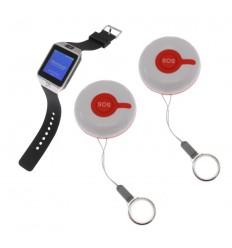 Alert Watch System 2
